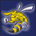 Hillsdale Mascot